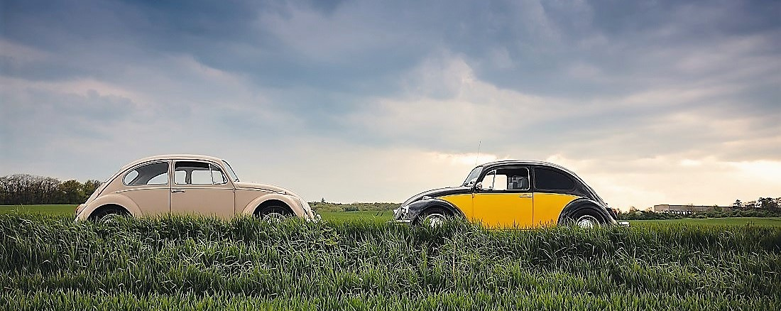 two-vintage-cars-in-the-grassfield
